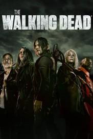 The Walking Dead-full